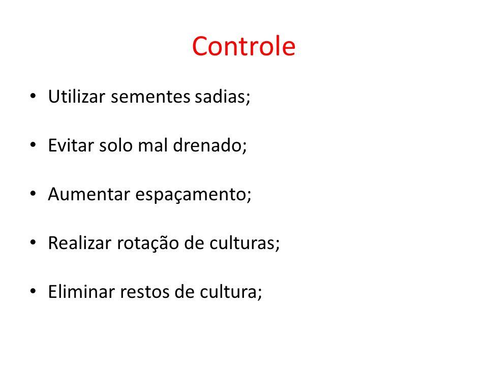 Controle Utilizar sementes sadias; Evitar solo mal drenado; Aumentar espaçamento; Realizar rotação de culturas; Eliminar restos de cultura;