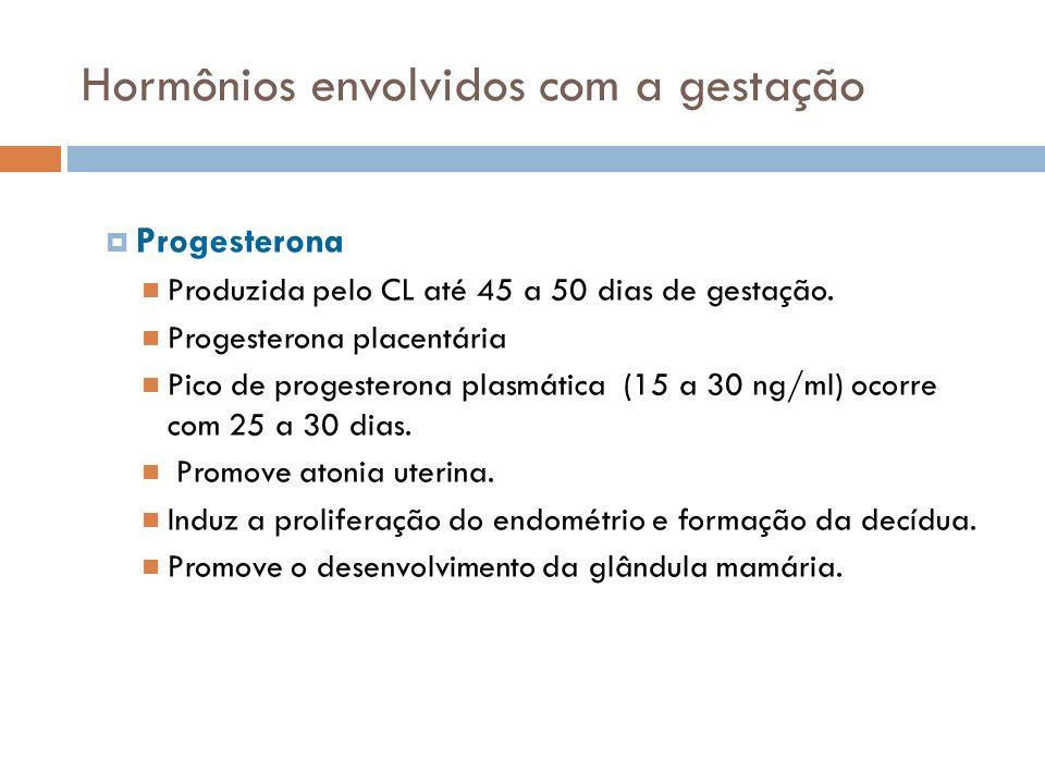Hormônios envolvidos com a gestação Progesterona Produzida pelo CL até 45 a 50 dias de gestação. Progesterona placentária Pico de progesterona plasmát