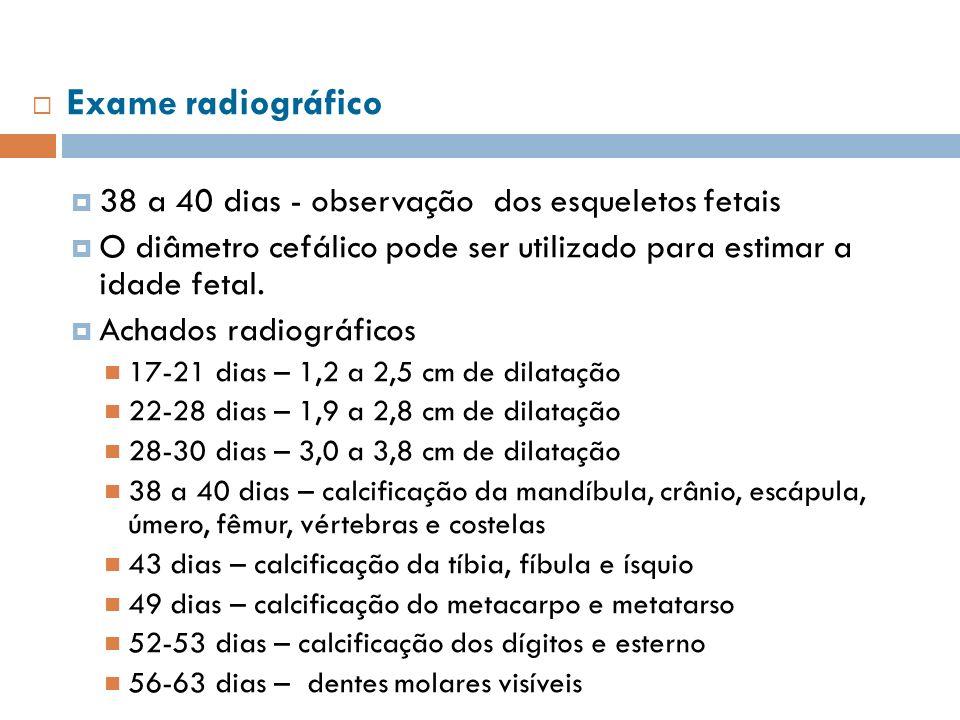 Exame radiográfico 38 a 40 dias - observação dos esqueletos fetais O diâmetro cefálico pode ser utilizado para estimar a idade fetal. Achados radiográ