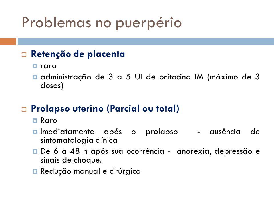 Problemas no puerpério Retenção de placenta rara administração de 3 a 5 UI de ocitocina IM (máximo de 3 doses) Prolapso uterino (Parcial ou total) Rar