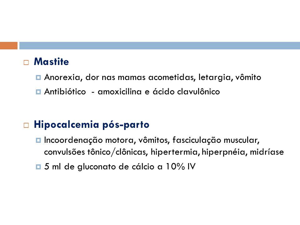 Mastite Anorexia, dor nas mamas acometidas, letargia, vômito Antibiótico - amoxicilina e ácido clavulônico Hipocalcemia pós-parto Incoordenação motora