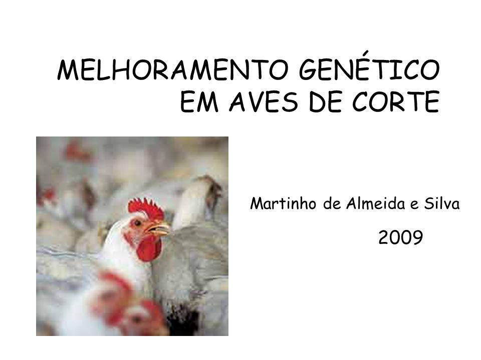 MELHORAMENTO GENÉTICO EM AVES DE CORTE Martinho de Almeida e Silva 2009