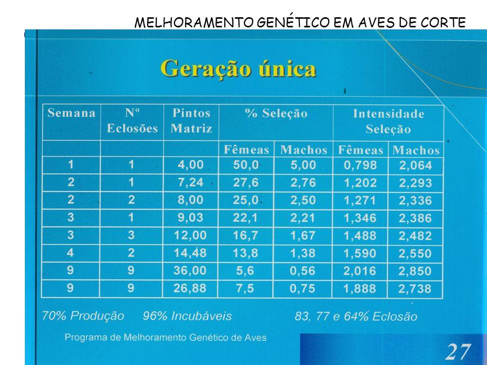 MELHORAMENTO GENÉTICO EM AVES DE CORTE Maiores produtores de matrizes de corte ATUALIZAR DADOS