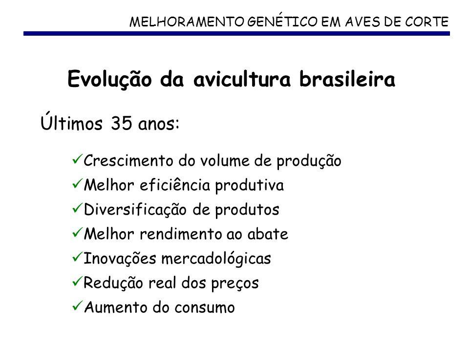 MELHORAMENTO GENÉTICO EM AVES DE CORTE Evolução da avicultura brasileira Crescimento do volume de produção Melhor eficiência produtiva Diversificação
