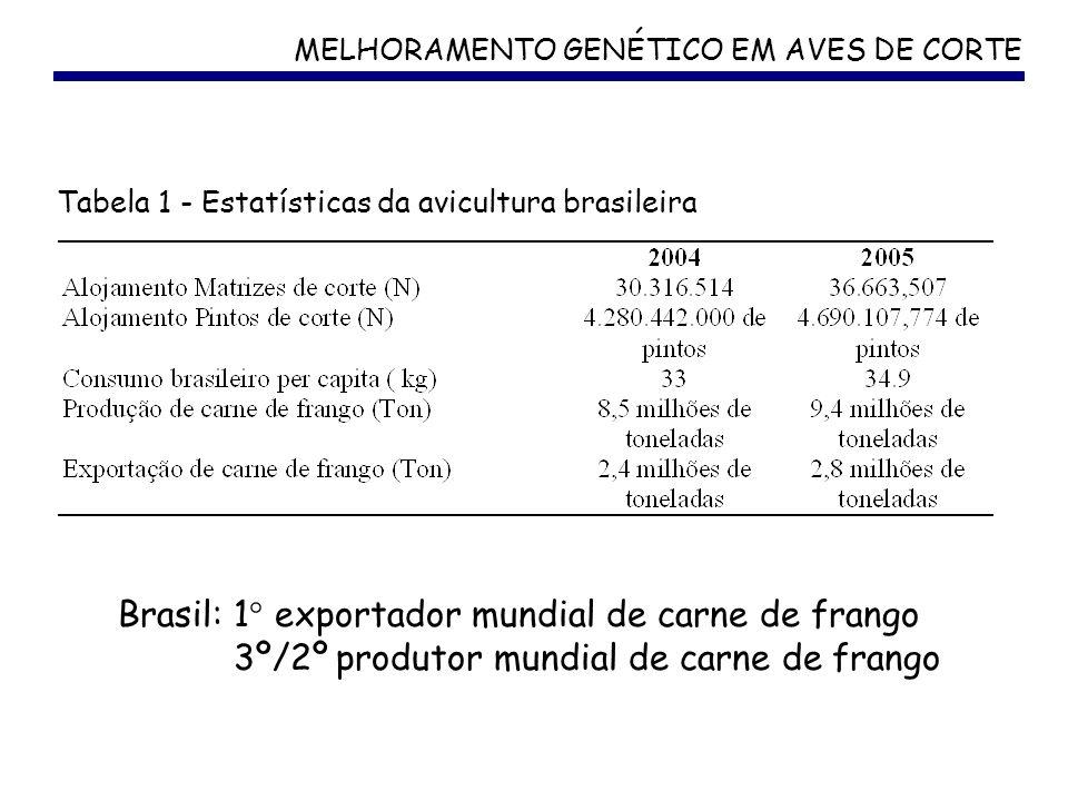MELHORAMENTO GENÉTICO EM AVES DE CORTE Brasil: 1° exportador mundial de carne de frango 3º/2º produtor mundial de carne de frango Tabela 1 - Estatísti