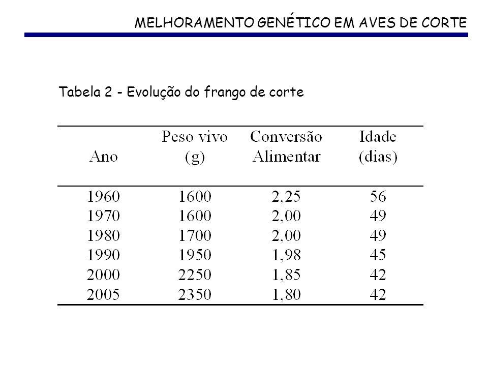 MELHORAMENTO GENÉTICO EM AVES DE CORTE Tabela 2 - Evolução do frango de corte