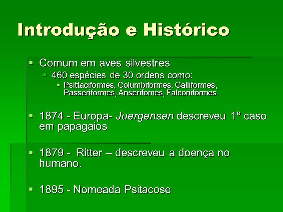 1929-30 – Europa e EUA – Epidemia de psitacose humana - 300 óbitos – incentivou estudos.