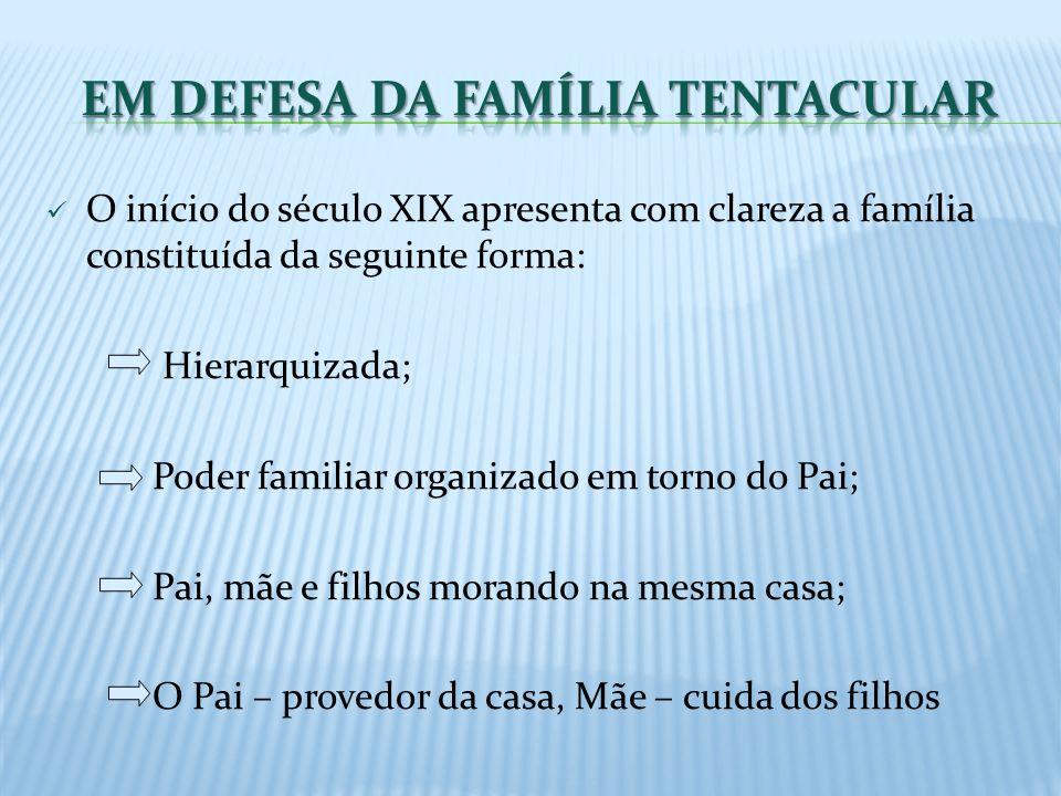 O início do século XIX apresenta com clareza a família constituída da seguinte forma: Hierarquizada; Poder familiar organizado em torno do Pai; Pai, m