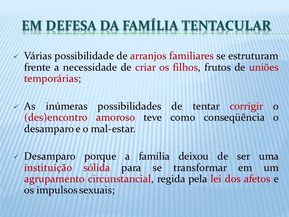 Várias possibilidade de arranjos familiares se estruturam frente a necessidade de criar os filhos, frutos de uniões temporárias; As inúmeras possibili