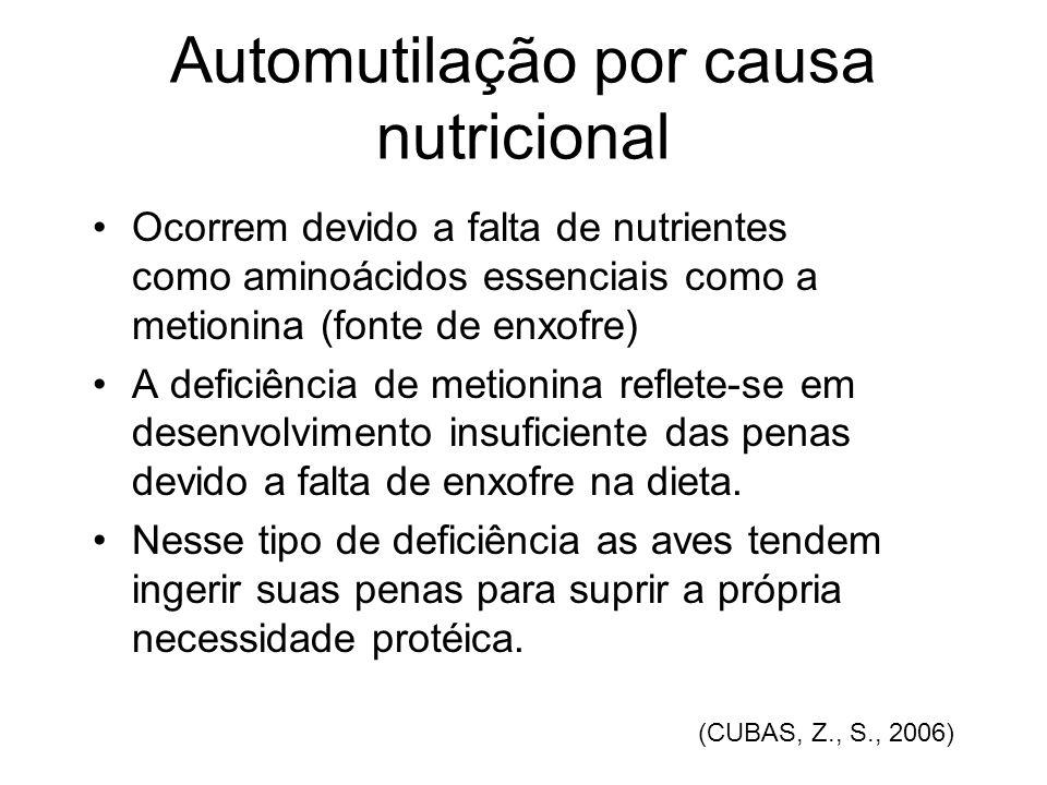 Automutilação por causa nutricional Ocorrem devido a falta de nutrientes como aminoácidos essenciais como a metionina (fonte de enxofre) A deficiência