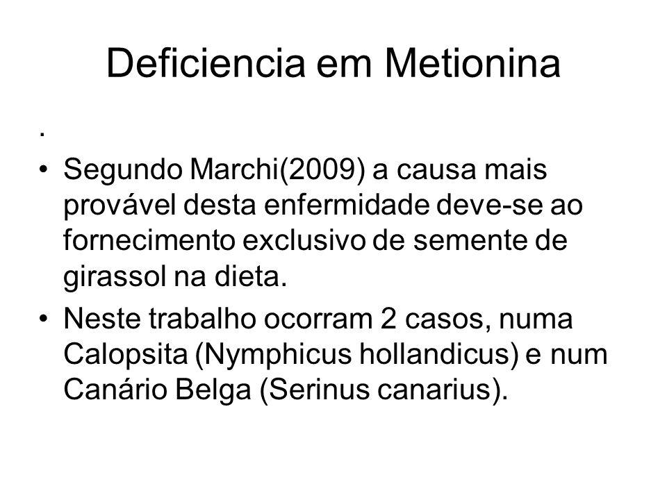 Deficiencia em Metionina. Segundo Marchi(2009) a causa mais provável desta enfermidade deve-se ao fornecimento exclusivo de semente de girassol na die