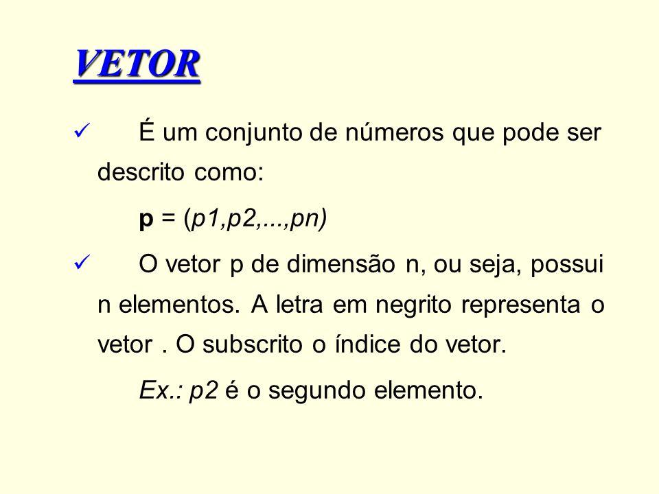 VETOR É um conjunto de números que pode ser descrito como: p = (p1,p2,...,pn) O vetor p de dimensão n, ou seja, possui n elementos. A letra em negrito