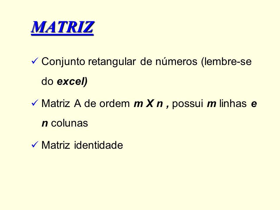 MATRIZ Conjunto retangular de números (lembre-se do excel) Matriz A de ordem m X n, possui m linhas e n colunas Matriz identidade