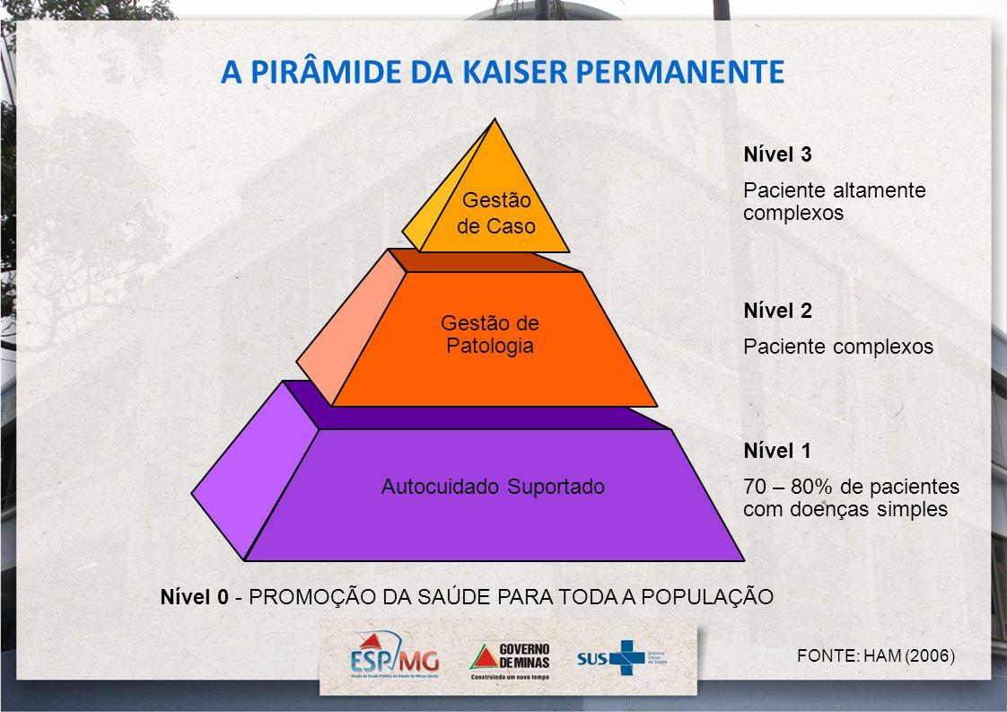 A PIRÂMIDE DA KAISER PERMANENTE FONTE: HAM (2006) Gestão de Caso Gestão de Patologia Autocuidado Suportado Nível 3 Paciente altamente complexos Nível