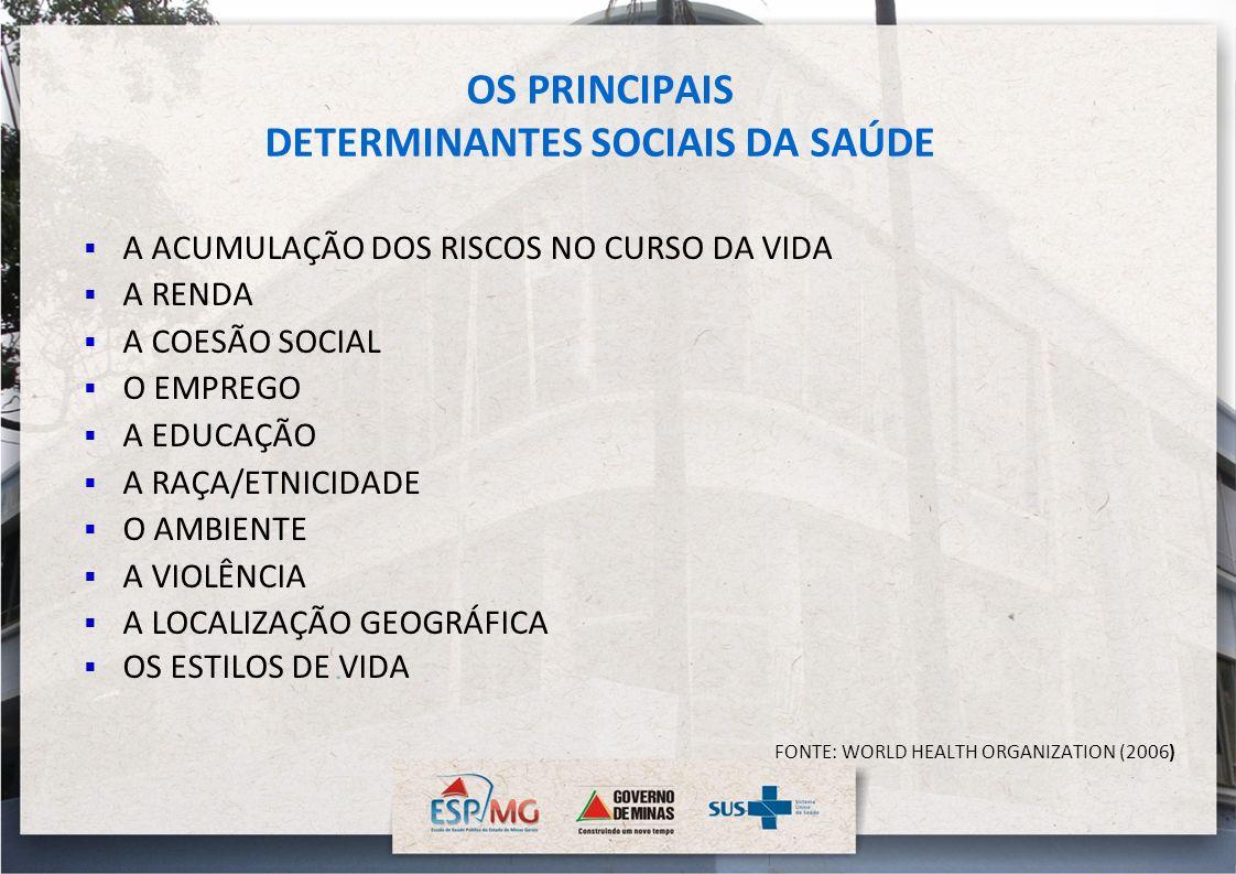 OS PRINCIPAIS DETERMINANTES SOCIAIS DA SAÚDE A ACUMULAÇÃO DOS RISCOS NO CURSO DA VIDA A RENDA A COESÃO SOCIAL O EMPREGO A EDUCAÇÃO A RAÇA/ETNICIDADE O
