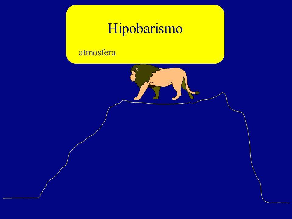 atmosfera Hipobarismo