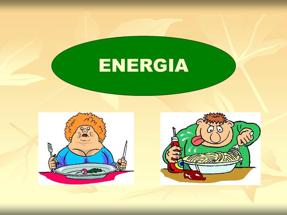 Necessidade de energia geralmente com a idade Mas doenças catabólicas e altos níveis de atividade física podem aumentar a demanda energética Recomendações Nutricionais Energia Atender as necessidades nutricionais do idoso é um desafio das necessidades de energia das necessidades de micronutrientes