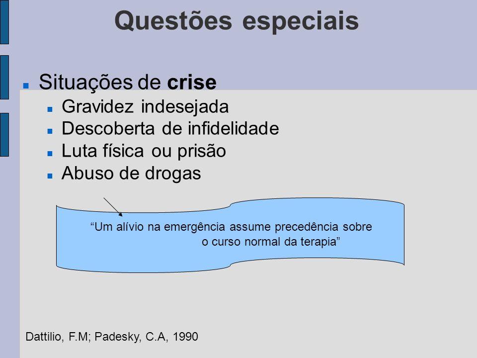 Questões especiais Situações de crise Gravidez indesejada Descoberta de infidelidade Luta física ou prisão Abuso de drogas Um alívio na emergência ass