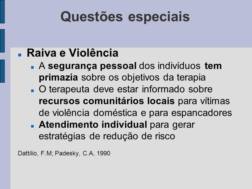 Questões especiais Raiva e Violência A segurança pessoal dos indivíduos tem primazia sobre os objetivos da terapia O terapeuta deve estar informado so
