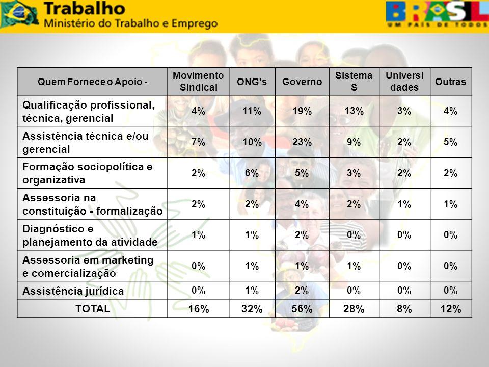 Quem Fornece o Apoio - Movimento Sindical ONG'sGoverno Sistema S Universi dades Outras Qualificação profissional, técnica, gerencial 4%11%19%13%3%4% A