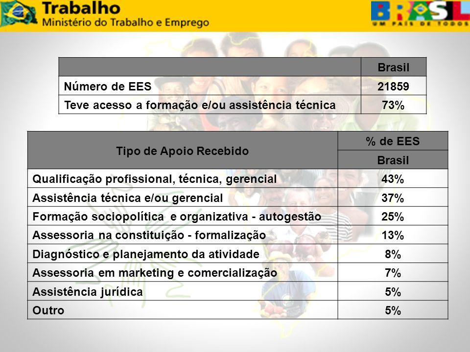 Brasil Número de EES21859 Teve acesso a formação e/ou assistência técnica73% Tipo de Apoio Recebido % de EES Brasil Qualificação profissional, técnica
