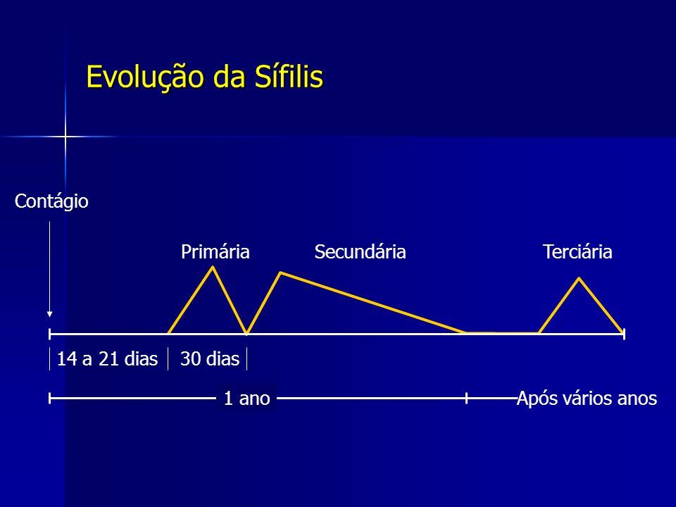 Evolução da Sífilis 14 a 21 dias30 dias Contágio PrimáriaSecundáriaTerciária 1 anoApós vários anos
