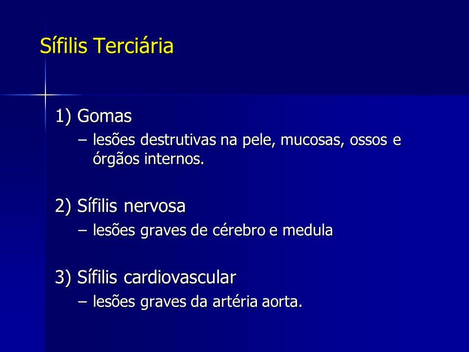 Sífilis Terciária 1) Gomas –lesões destrutivas na pele, mucosas, ossos e órgãos internos. 2) Sífilis nervosa –lesões graves de cérebro e medula 3) Síf
