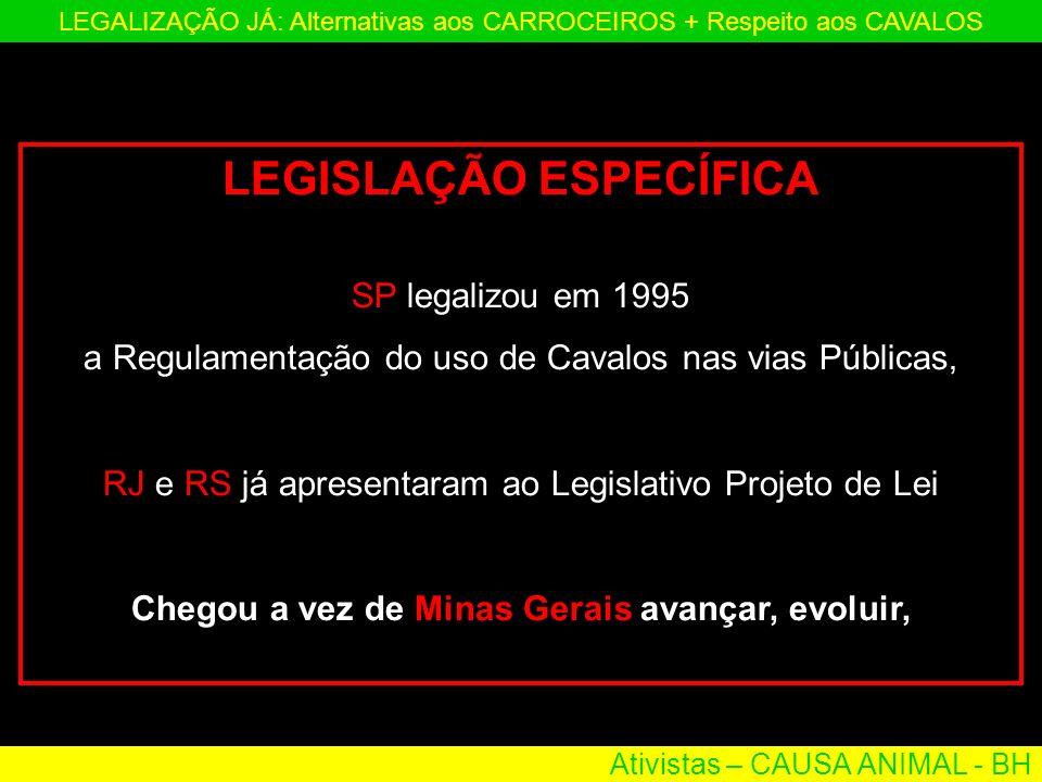 Ativistas – CAUSA ANIMAL - BH LEGALIZAÇÃO JÁ: Alternativas aos CARROCEIROS + Respeito aos CAVALOS LEGISLAÇÃO ESPECÍFICA SP legalizou em 1995 a Regulam