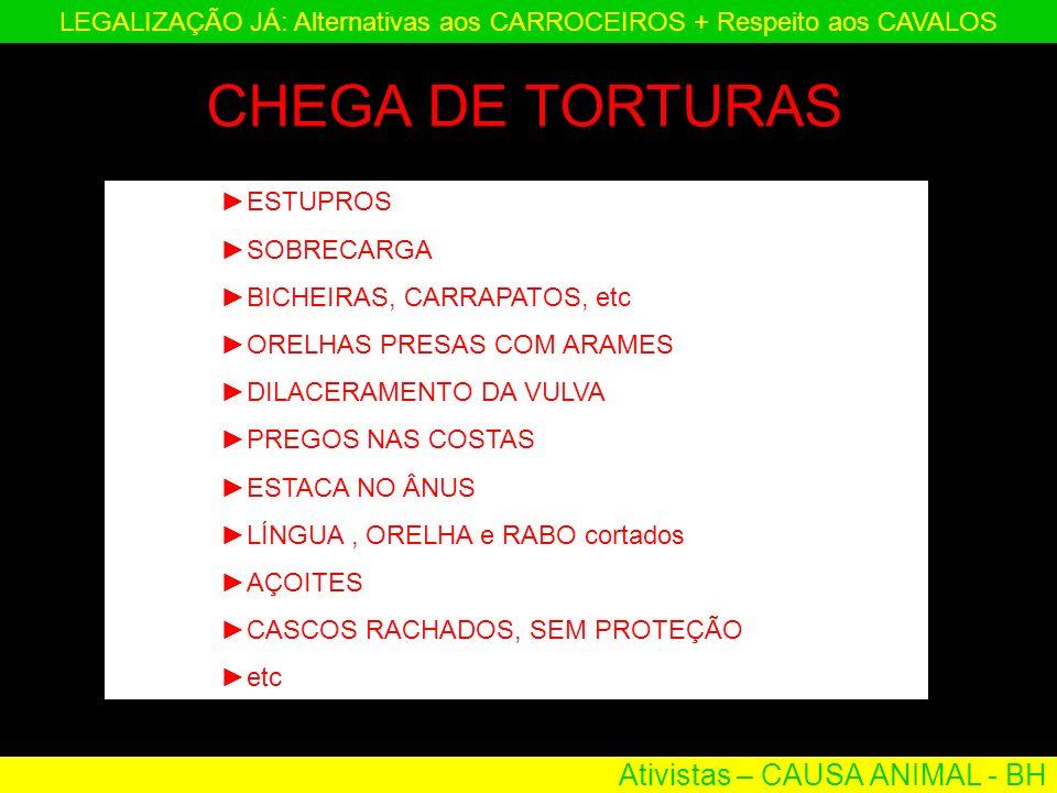 Ativistas – CAUSA ANIMAL - BH LEGALIZAÇÃO JÁ: Alternativas aos CARROCEIROS + Respeito aos CAVALOS ESTUPROS SOBRECARGA BICHEIRAS, CARRAPATOS, etc ORELH