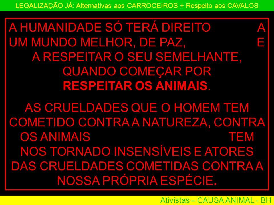 Ativistas – CAUSA ANIMAL - BH LEGALIZAÇÃO JÁ: Alternativas aos CARROCEIROS + Respeito aos CAVALOS A HUMANIDADE SÓ TERÁ DIREITO A UM MUNDO MELHOR, DE P