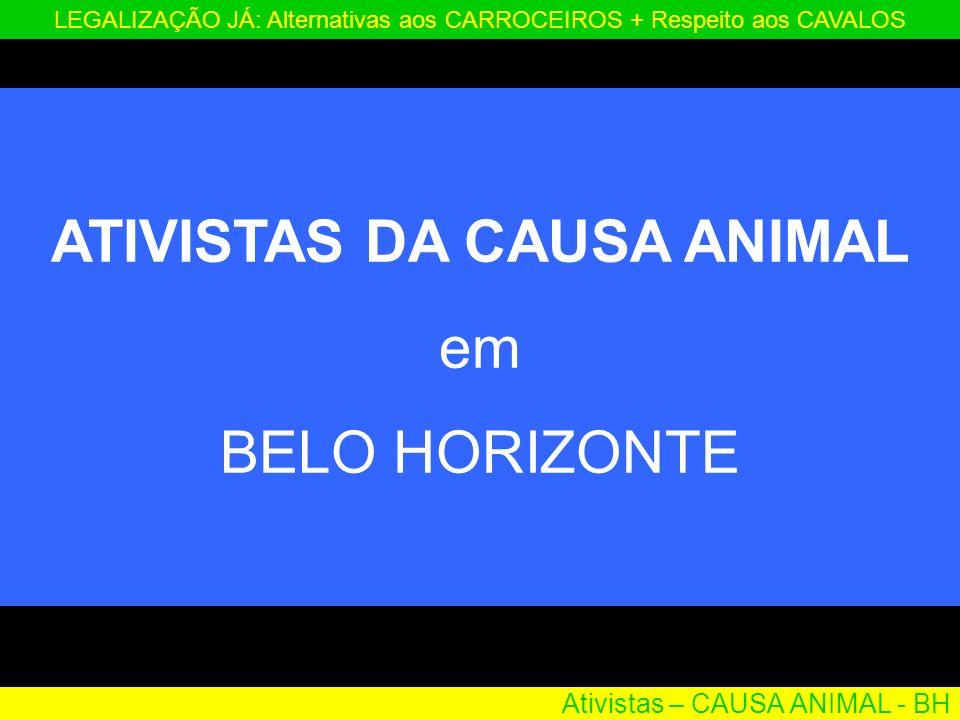 Ativistas – CAUSA ANIMAL - BH LEGALIZAÇÃO JÁ: Alternativas aos CARROCEIROS + Respeito aos CAVALOS ATIVISTAS DA CAUSA ANIMAL em BELO HORIZONTE