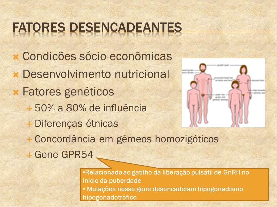 Condições sócio-econômicas Desenvolvimento nutricional Fatores genéticos 50% a 80% de influência Diferenças étnicas Concordância em gêmeos homozigótic