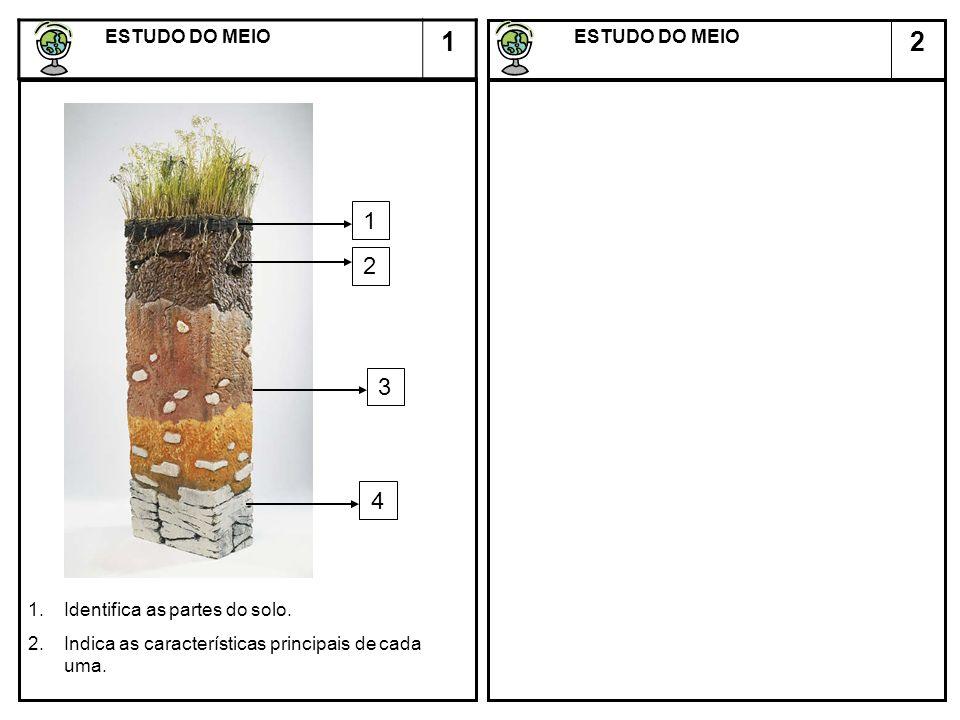 2 ESTUDO DO MEIO ESTUDO DO MEIO 1 1 4 3 2 1.Identifica as partes do solo. 2.Indica as características principais de cada uma.