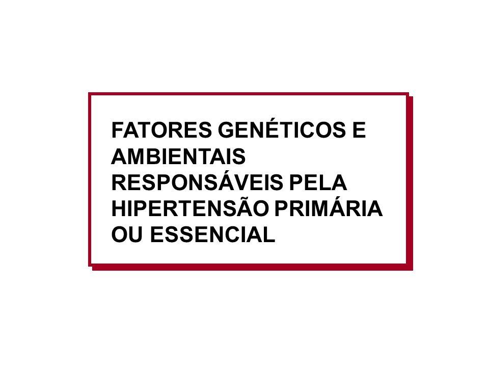 FATORES GENÉTICOS E AMBIENTAIS RESPONSÁVEIS PELA HIPERTENSÃO PRIMÁRIA OU ESSENCIAL