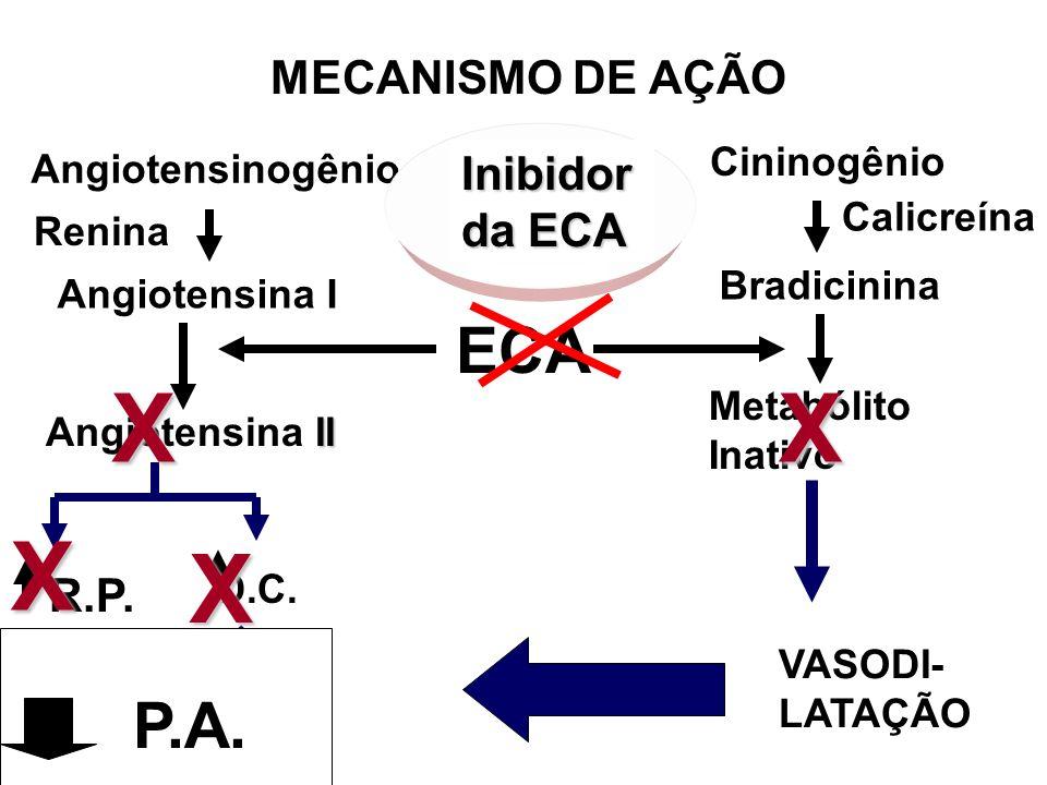Angiotensinogênio Renina Angiotensina I Cininogênio Calicreína Bradicinina ECA II Angiotensina II Metabólito Inativo R.P. D.C. P.A X VASODI- LATAÇÃOXX
