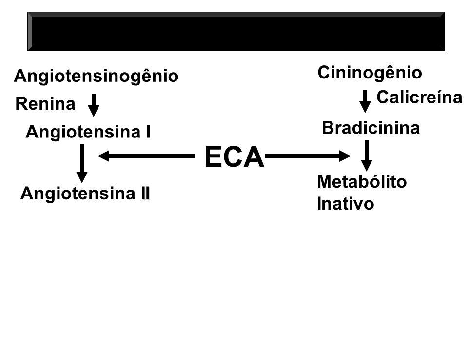 Angiotensinogênio Renina Angiotensina I Cininogênio Calicreína Bradicinina ECA II Angiotensina II Metabólito Inativo MECANISMO DE AÇÃO