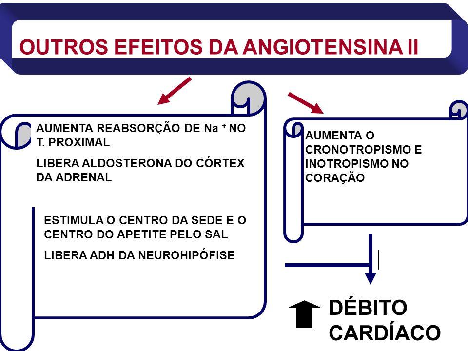 AUMENTA REABSORÇÃO DE Na + NO T. PROXIMAL LIBERA ALDOSTERONA DO CÓRTEX DA ADRENAL AUMENTA O CRONOTROPISMO E INOTROPISMO NO CORAÇÃO OUTROS EFEITOS DA A