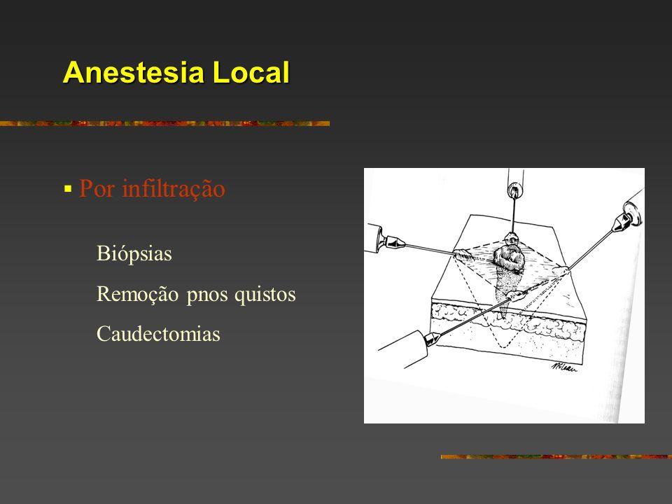 Anestesia Local Por infiltração Biópsias Remoção pnos quistos Caudectomias