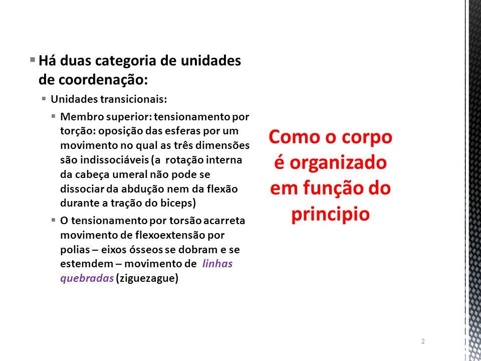 Há duas categoria de unidades de coordenação: Unidades transicionais: Membro superior: tensionamento por torção: oposição das esferas por um movimento