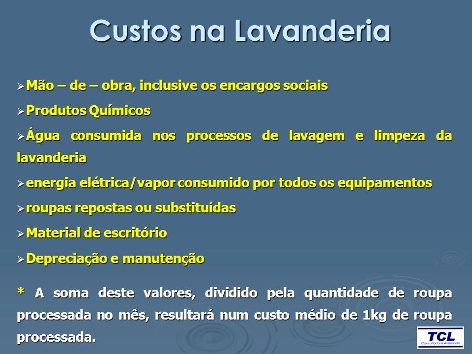 Custos na Lavanderia Mão – de – obra, inclusive os encargos sociais Mão – de – obra, inclusive os encargos sociais Produtos Químicos Produtos Químicos