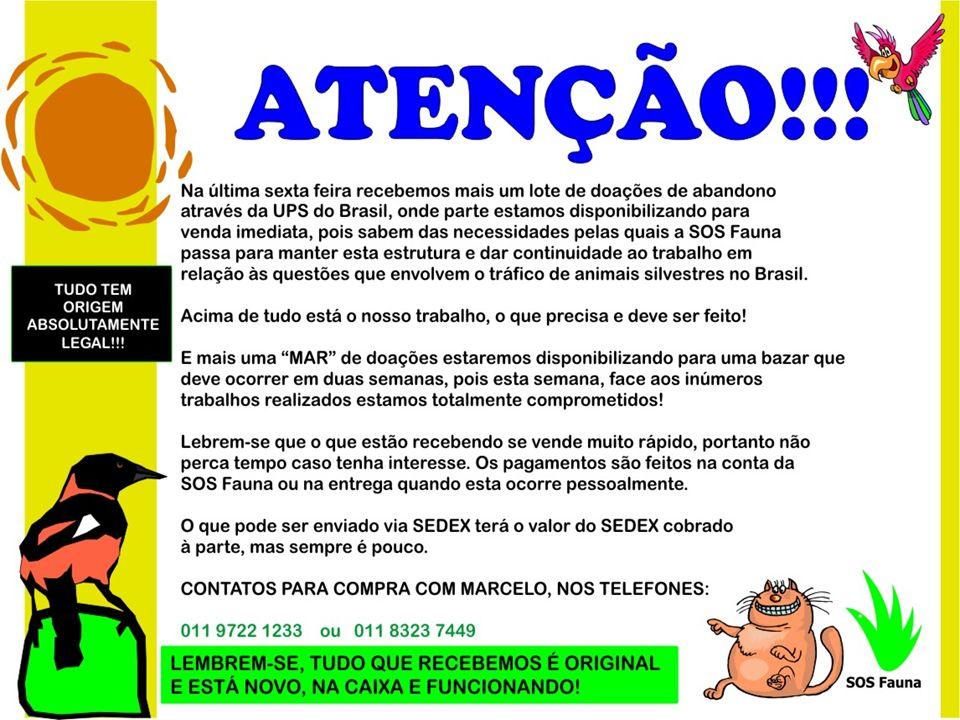 CELULAR SAMSUNG – Lançamento - MODELO SGH-E251 Somente para operadora TIM Preço no exterior: EUROS 89.90 Chegaria ao Brasil por: R$ 503,00 Preço SOS Fauna: R$ 250,00 CELULAR SAMSUNG – Lançamento - MODELO SGH-E251 Somente para operadora TIM Preço no exterior: EUROS 89.90 Chegaria ao Brasil por: R$ 503,00 Preço SOS Fauna: R$ 250,00