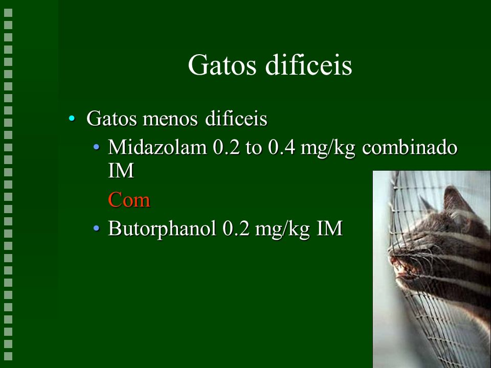 Gatos dificeis Gatos menos dificeisGatos menos dificeis Midazolam 0.2 to 0.4 mg/kg combinado IMMidazolam 0.2 to 0.4 mg/kg combinado IMCom Butorphanol
