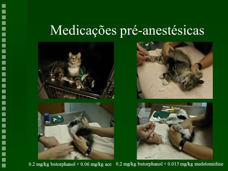 Medicações pré-anestésicas 0.2 mg/kg butorphanol + 0.06 mg/kg ace 0.2 mg/kg butorphanol + 0.015 mg/kg medetomidine