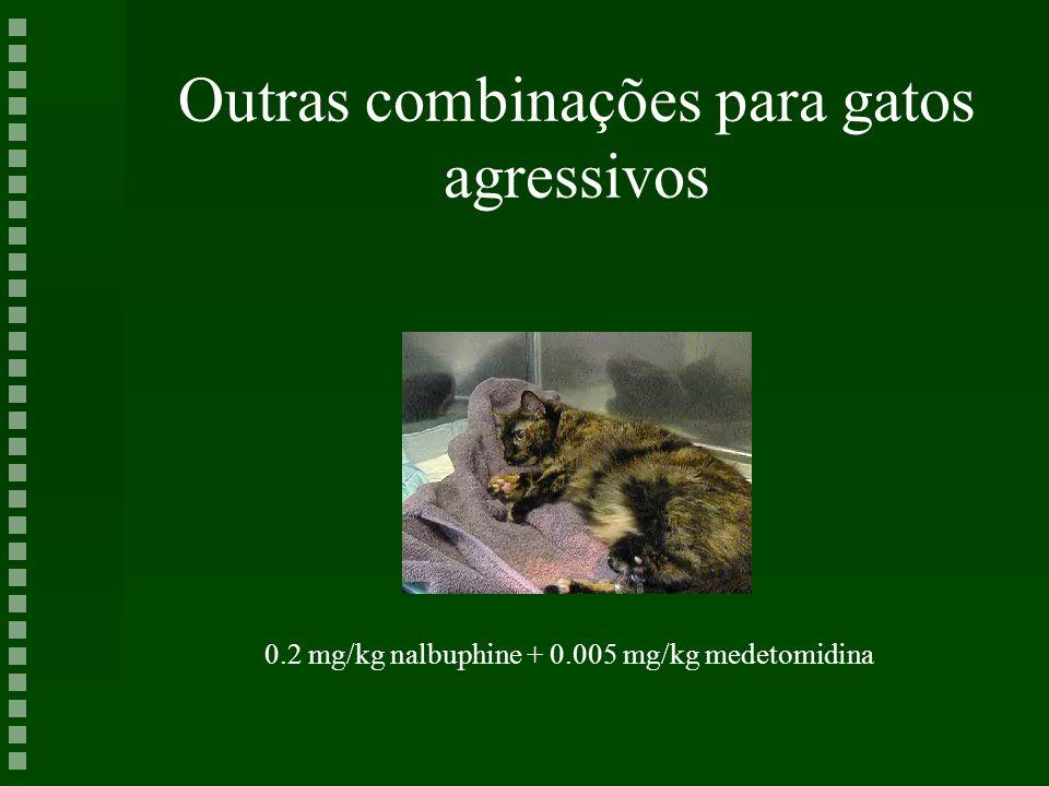 Outras combinações para gatos agressivos 0.2 mg/kg nalbuphine + 0.005 mg/kg medetomidina