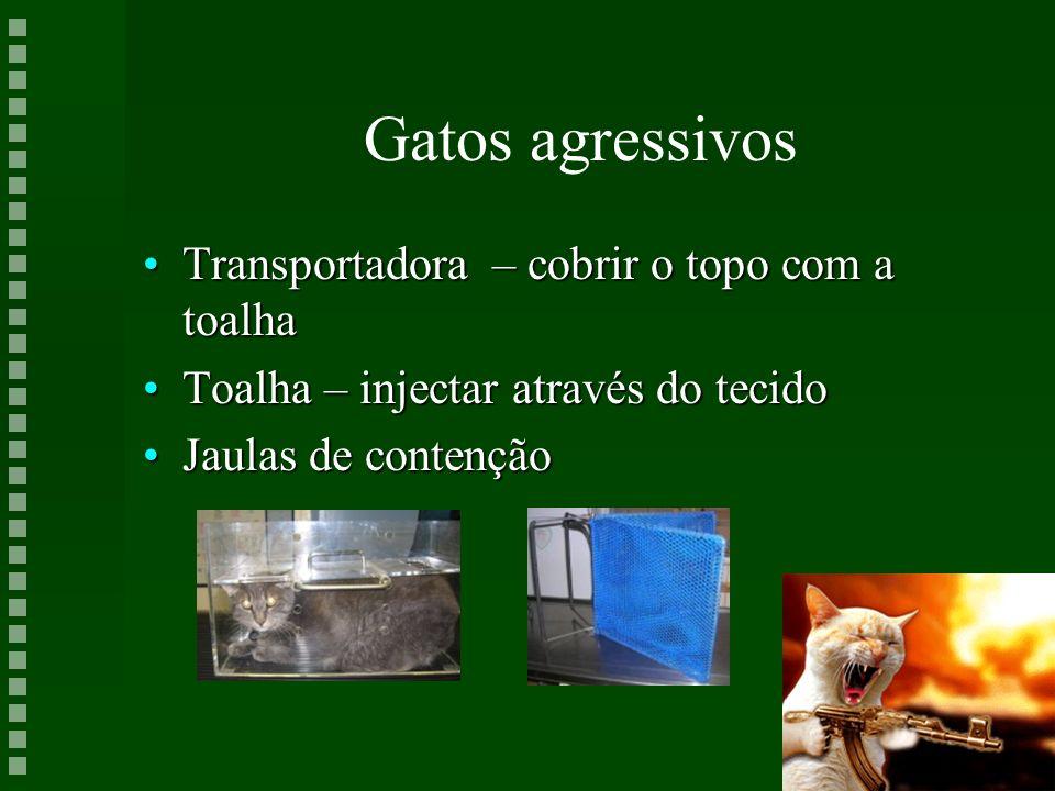 Gatos agressivos Transportadora – cobrir o topo com a toalhaTransportadora – cobrir o topo com a toalha Toalha – injectar através do tecidoToalha – in