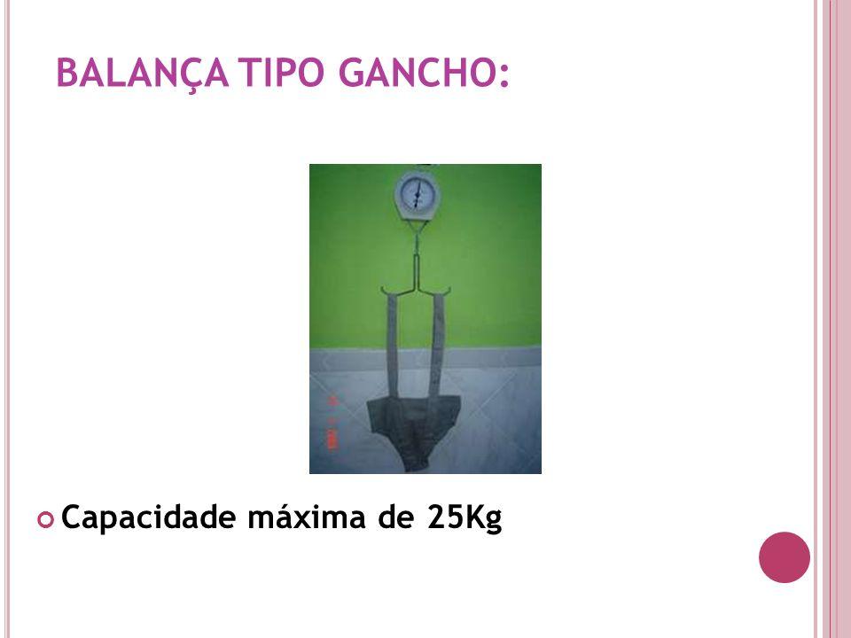 BALANÇA TIPO GANCHO: Capacidade máxima de 25Kg