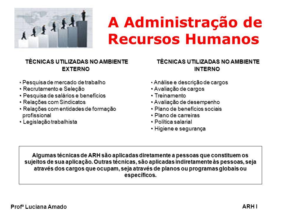 Profª Luciana Amado ARH I A Administração de Recursos Humanos TÉCNICAS UTILIZADAS NO AMBIENTE EXTERNO TÉCNICAS UTILIZADAS NO AMBIENTE EXTERNO Pesquisa