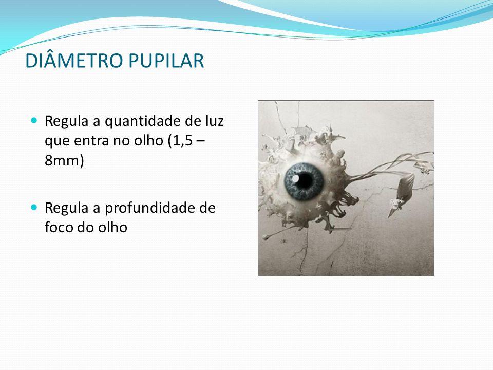 DIÂMETRO PUPILAR Regula a quantidade de luz que entra no olho (1,5 – 8mm) Regula a profundidade de foco do olho