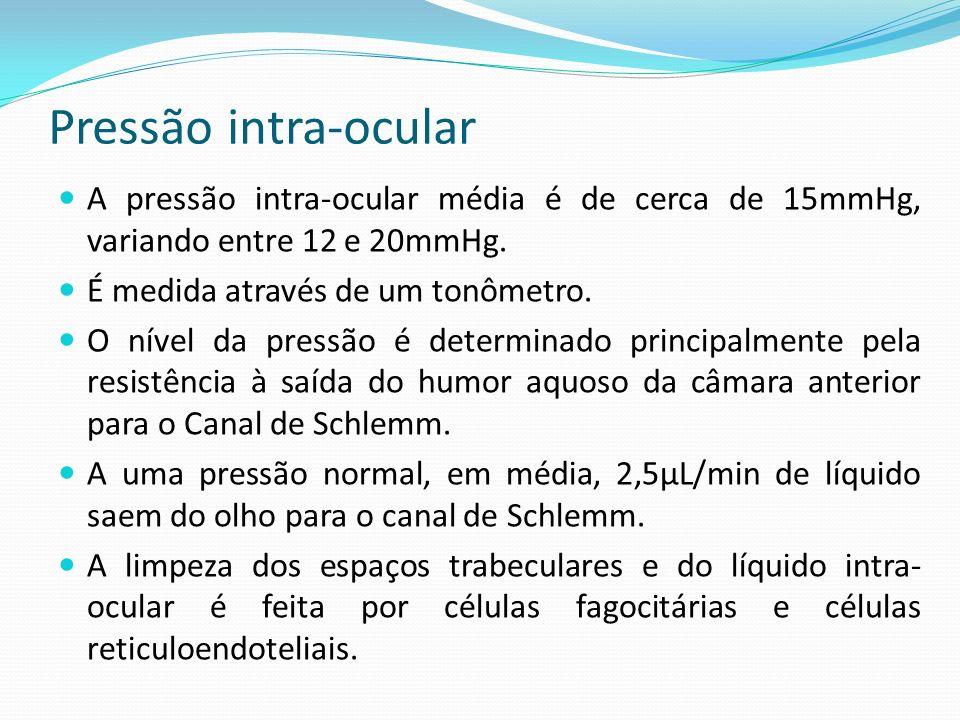 Pressão intra-ocular A pressão intra-ocular média é de cerca de 15mmHg, variando entre 12 e 20mmHg. É medida através de um tonômetro. O nível da press