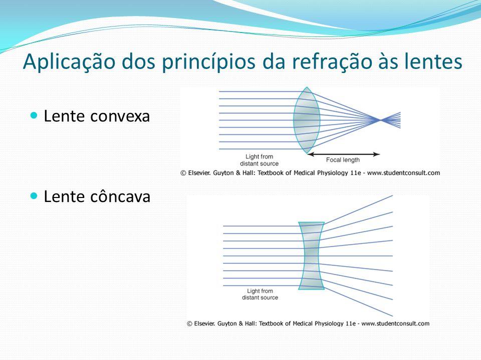 Aplicação dos princípios da refração às lentes Lente convexa Lente côncava